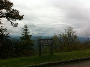 Licklog Ridge Overlook