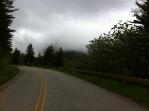 Mount Mitchell Road