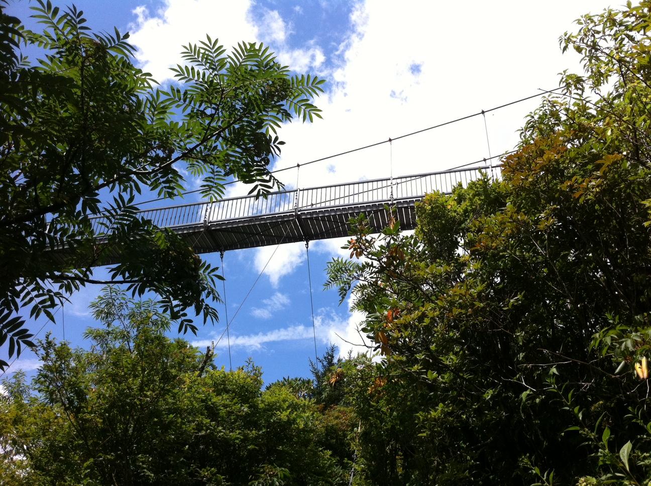 Are absolutely bridge resort swinging