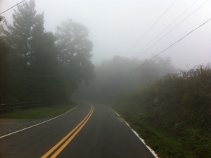 fog on highway 221