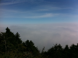 Clouds below Grandfather Mountain