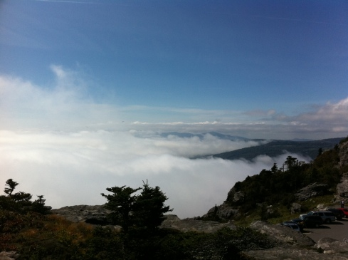 From top of Grandfather Mtn