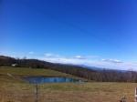 Pinnacle Pond View