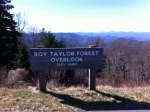 Roy Taylor Forest
