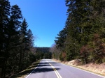 Clingman's Dome Rd. We could barely make out the observation tower in the distance.
