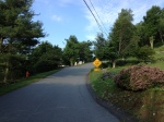 This blind hill was the steepest part of the ride, between 18-20%.