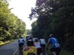 A large pack riding on the Blue Ridge Parkway.