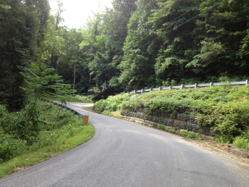 One of the 17 brutal switchbacks on Green River Cove Rd.