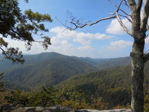 Plenty of views like this in Virginia.