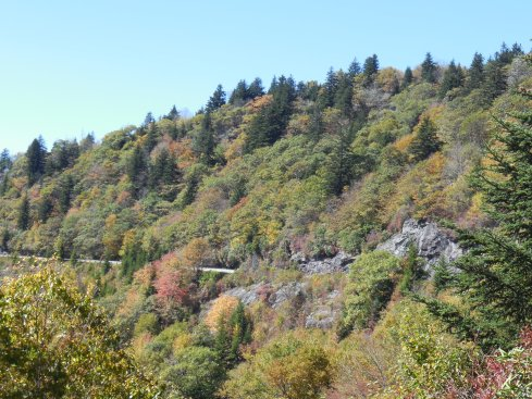 Some of the colors on the climb up to Waterrock Knob.